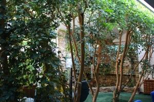 Une forêt intérieure
